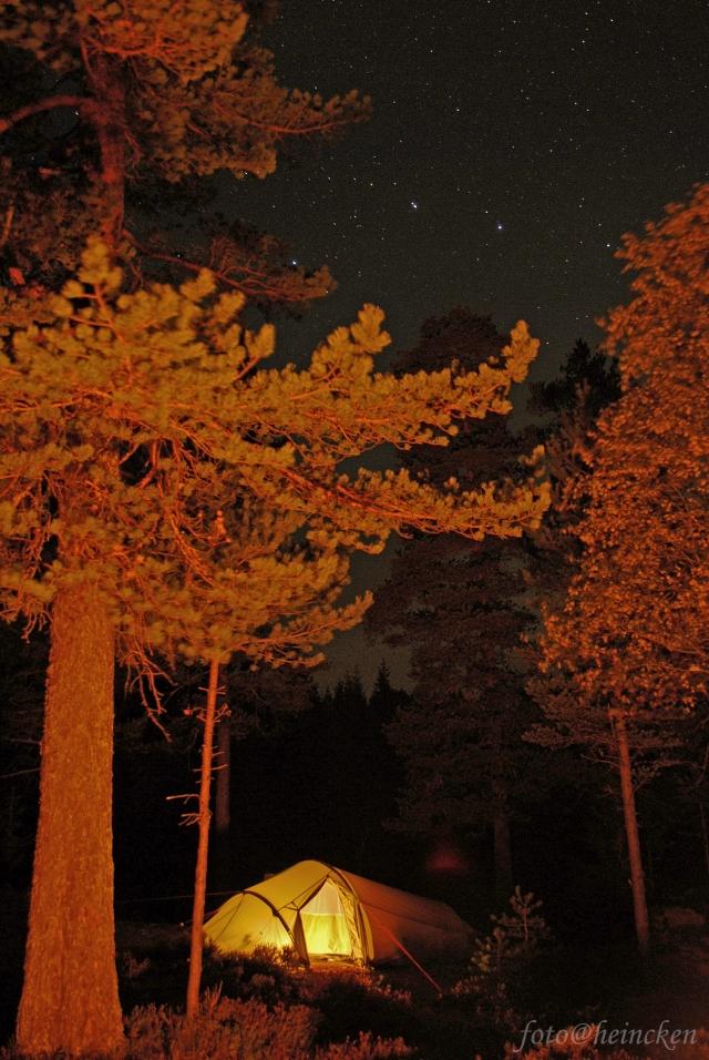 stjernenatt